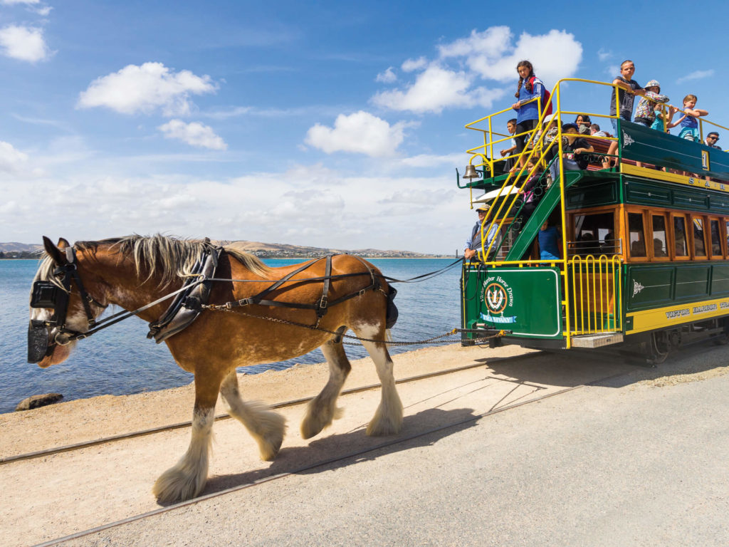Horse drawn tour carriage
